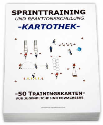 Volleyball-Kartothek-Sprinttraining